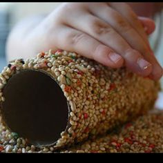 Birdfeeder-  toilet paper roll with peanut butter on it rolled in bird seed. Slide over a branch. Substitute crisco shortening for peanut allergies.