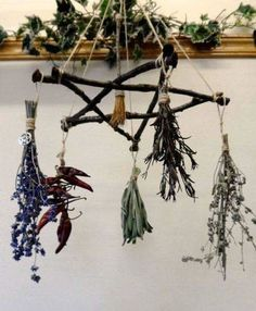 The Aries Witch ♈️ Kitchen witch - pentagram pentacle DIY herb drying rack - smudge sticks - pagan - Wicca - witchcraft