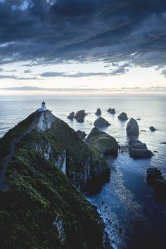 Nugget Point, Otago, South Island, New Zealand