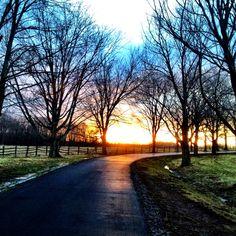 Knox Farm, East Aurora NY  repinned by www.rmeisner.com