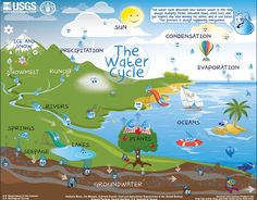 Interactive water cycle map.  There are three levels to choose from.  Links have text.