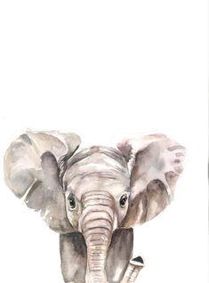 Baby Elephant Print | Etsy