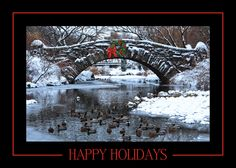 Bridge Over Chilly Waters - Holiday Greeting Cards- A scene of a snow covered bridge in New York City decorated with a holiday wreath of red and green. The Office Gal