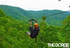 Zip line near Mill Springs, NC, close to the Tryon International Equestrian Center ~ http://tryon.coth.com/