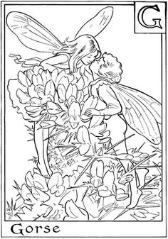 flower fairy coloring pages free.html