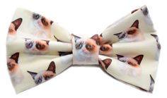 6 Ways to Make a Grumpy Cat Fashion Statement