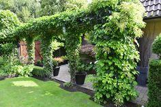 wunderschöner Raumtrenner im Garten