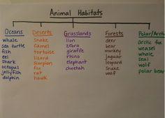 Animal Habitats anchor chart
