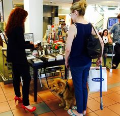 20 Best Barnes and Noble Book Signings and More images in