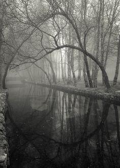 """The Little Bridge"" by Jose Viegas / via whiteless.tumblr.com/"