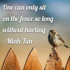 One can only sit on the fence so long without hurting - Minh Tan Fence Quotes, Sitting On The Fence, Political Views, Good Job, Going To Work, Food For Thought, Wise Words, It Hurts