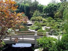 Best of Long Beach, Rejuvenate in Earl Burns Miller Japanese Garden Long Beach California, Northern California, Tips For Growing Tomatoes, Asian Garden, Us Destinations, Park Around, Best Places To Eat, Covered Bridges, Garden Bridge