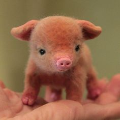 Handmade cute Needle felting project wool animal pig(Via…