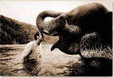 Canadian-born artist Gregory Colbert began his career in Paris making documentary films about social issues. Filmmaking led to his work as a fine arts photographer, and the first public exhibition of his work was held in 1992 at the Musée de l'Elysée in Switzerland.