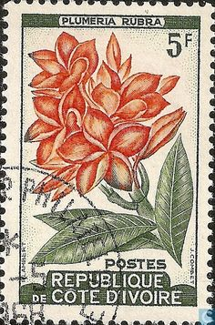 Flower Stamp, Flower Art, Grow Your Own Food, Ivory Coast, Stamp Collecting, Postage Stamps, Postcards, Countries, Cocoa