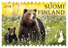 Finlands natursymboler | Åland Post Webshop Fauna, Brown Bear, Ikon, Postage Stamps, Animal Photography, Finland, Ephemera, Nostalgia, Teddy Bear