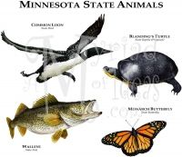 Minnesota State Animal Tee Rhs USA State Animals Tshirts - What state is mn