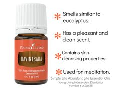 Get this oil FREE May 2017 with qualifying Essential Rewards orders. Ravintsara, Yl Oils, Abundant Life, Young Living Essential Oils, Essentials, Wellness, Cleaning, Pure Products, Free
