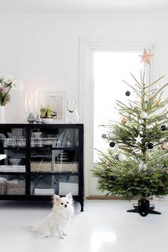 :: o christmas tree ::