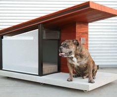 Show your furry friend some love by moving them inside this fabulous MDK9 dog house. Made from Brazilian teak, powder coated steel, and concrete, the home sports a contemporary design complete with interior lighting, a name plaque, and a comfy bed.
