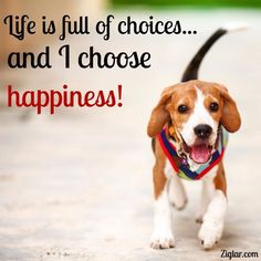 Choose Happiness!