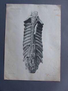 Litho ca 1860