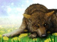 Wolf, Dandelion by SheltieWolf on DeviantArt
