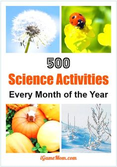 Love science but could not come up science activity ideas to do with kids? We have listed over 500 science activities for kids for each month of the year, with season themes and activities for kids from preschool kindergarten to high school. Great STEM resource for science class at school or homeschool or after school activities at home. You can also plan your science camp using these resources.