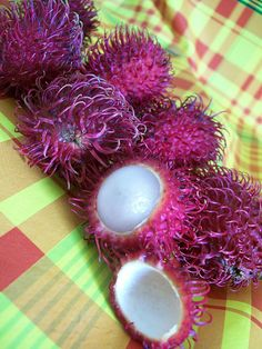 """Rambutans by Jean-Pierre HOAREAU. Closely related to the lychee and logan, the Rambutan is very unusual looking with its hairy appearance. It gets its name from the Malaysian word for hair, """"rambut."""" It has a juicy-sweet texture, similar to a lychee, but less acidic. Peel off the hairy skin to extract to fruit, and remove the seed. The rosy flavor of the rambutan resembles the strawberry and muscat grape. The rambutan can be eaten by itself or in salads, with vegetables, and in sauces."""