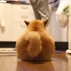 HAPPY FRIDAY!!✨金曜日おつまる〜*\(^o^)/*ごはん食べた? #ごはん待機中 #ぷりけつ選手権
