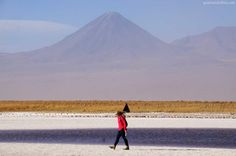 laguna Cejar - Atacama