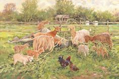 #goatvet likes this painting of Golden Guernsey Goats at Pear Tree Farm