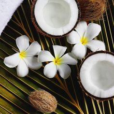 The exotic blend of Coconut Coprah Oil & sweet scented Frangipani flowers - the key to the Elemis Frangipani Monoi range #Elemis #Skincare