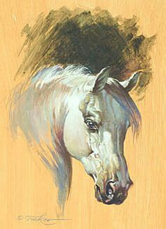 I'm not thrilled with the eye, but I like everything else a lot. Pretty Horses, Beautiful Horses, Horse Drawings, Art Drawings, Art Pictures, Art Images, Horse Artwork, Animal Paintings, Art Paintings