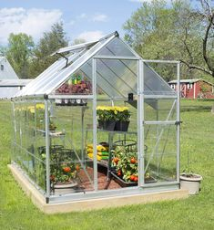 How to Choose the Best Greenhouse Kit - organicgardentips.com