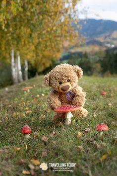 Teddy Bear Party, Cute Teddy Bears, Bubblegum Balloons, Teddy Bear Pictures, Tatty Teddy, Binky, Art Journal Inspiration, Plushies, Illustrations