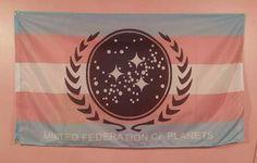 United Federation Of Planets, Star Trek Tos, Transgender, Flag, Stars, Flags