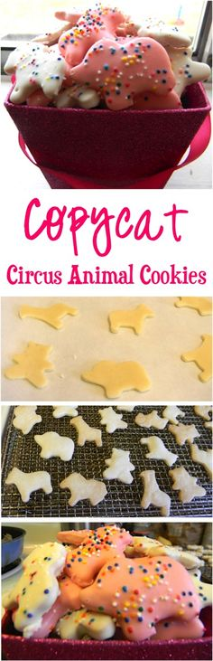 Copycat Circus Animal Cookies Recipe!  Just like Mother's Animal Crackers... this fun cookie recipe will have you reminiscing and the kids begging for more!
