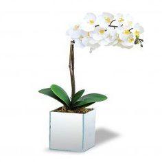 Arranjo de flores Artificiais Orquideas Brancas no Cachepot Vidro Espelhado