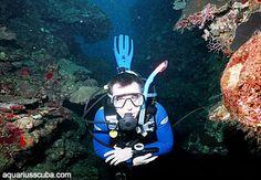 Diving in Honduras, Roatan Honduras Roatan, North Face Backpack, Scuba Diving, The North Face, Diving