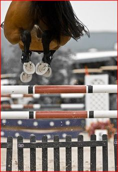"""""""there is something about jumping a horse over a fence that is good for the heart of a man"""""""