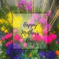 Please follow me on Instagram @kellym7609!  I follow back! : To all the moms everywhere!  #love  #happiness #Canva