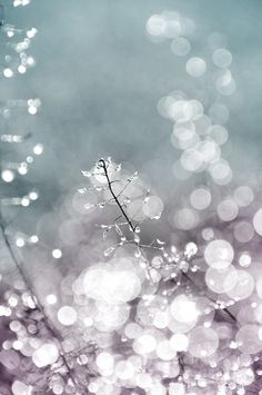 icy bokeh- painting inspiration