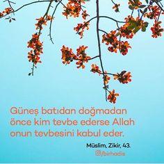 Günde 100 defa tevbe eden Peygamber.  #BirHadis #SahihHadis #HadisiŞerif #Hadis #HzMuhammed (sav) #GününHadisi #Allah #Tevbe