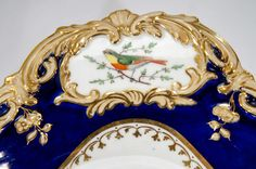 19th Century Hand Painted Botanical Dessert Service with Hand Painted Birds | From a unique collection of antique and modern porcelain at https://www.1stdibs.com/furniture/dining-entertaining/porcelain/