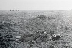 Commandant Potgieter sprawled in the grass 27 metres from the British line, after the battle of Rooiwal on 11 April He and 50 of his men died charging the British line on horseback. - This Day in History: Mar Battle of Tweebosch, South Africa Honduras, Congo Free State, Addis Abeba, French West Africa, Last Battle, Korean War, British Colonial, Second World, African History
