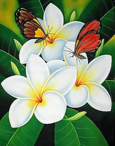 OIL Painting ON Canvas. Frangipani AND Butterflies ,80cm X 60cm Unframed | eBay
