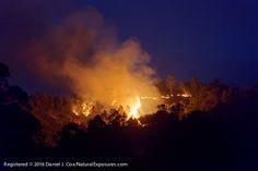 2016 December Natural Note: Madagascar Burning
