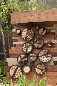 RBC Blue Water Roof Garden RHS Chelsea Flower Show The walls of the building are covered in circular habitat panels which provide shelter and habitat, again for invertebrates, with a focus on solitary bees. Diy Garden, Garden Projects, Garden Plants, Garden Wall Art, Art Projects, Chelsea Flower Show, Bug Hotel, Diy Bird Feeder, Earthship