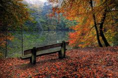 Autumn Rest by Merlin08